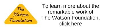 WatsonFoundationGraphic